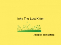 Inky The Lost Kitten