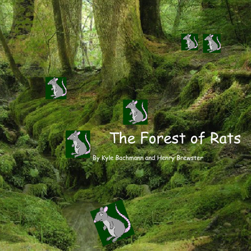 Forest of Rats