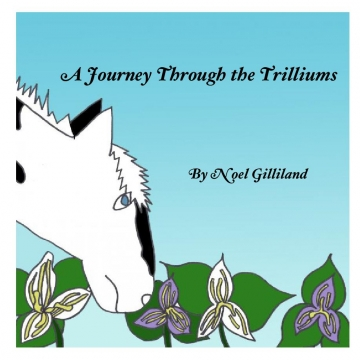 A Journey through Trilliums