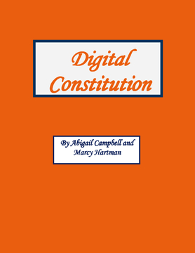 Digital Constitution