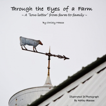 Through The Eyes Of A Farm