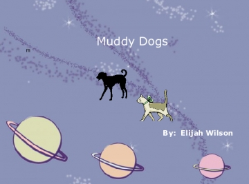 The Cat and Dog In  the Mud