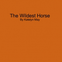 The Wildest Horse