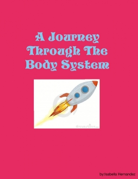 A Journey Through The Body Systems