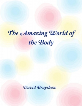 The amazing world of the body
