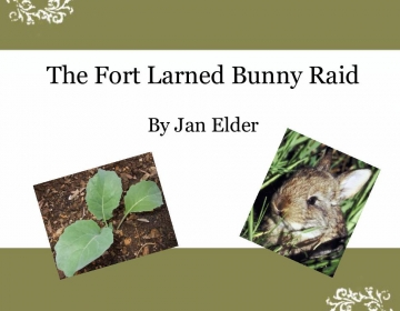 The Fort Larned Bunny Raid