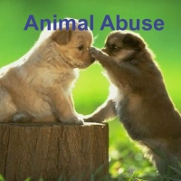 Help Resolve Animal Abuse