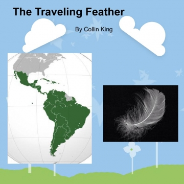 The Traveling Feather