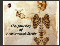The Journey of Anatomical Strife