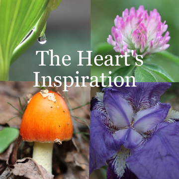 The Heart's Inspiration