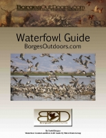Waterfowl Identification Guide