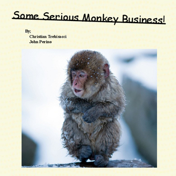 Some Serious Monkey Business
