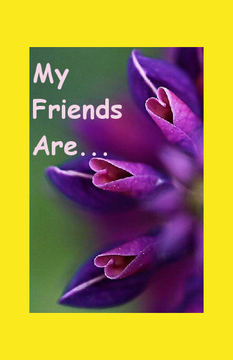 My Friends Are...