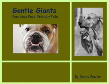Gentle Giants