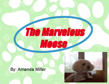 The Marvelous Moose