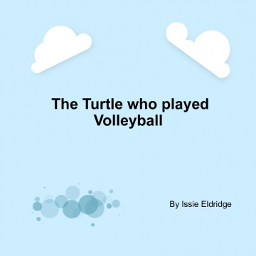 The turtle who played volleyball