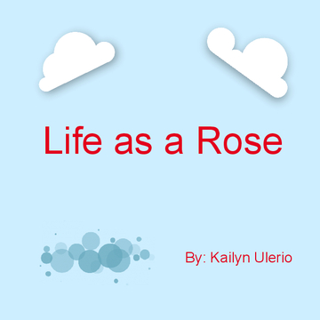 Life as a rose
