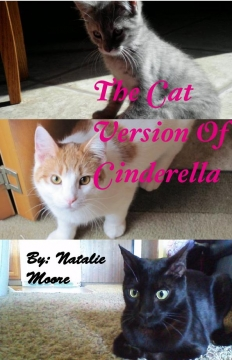 The Cat Version of Cinderella