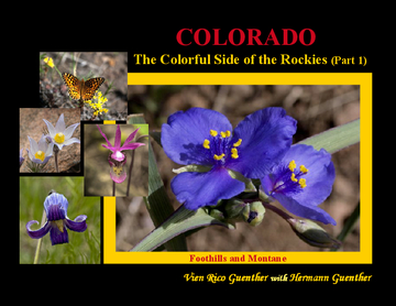 Colorado: The Colorful Side of the Rockies (Part 1)