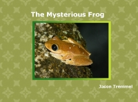 The Mysterious Frog