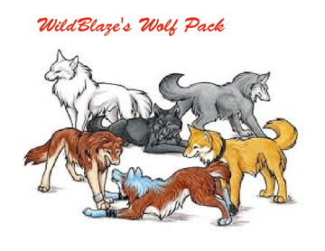 WildBlaze's Wolf Pack