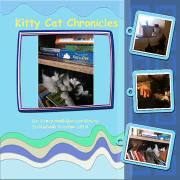 The Kitty Chronicles