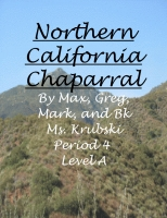 Northern California Chaparral