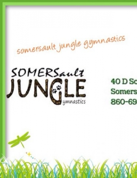 Somersault jungle gymnastics