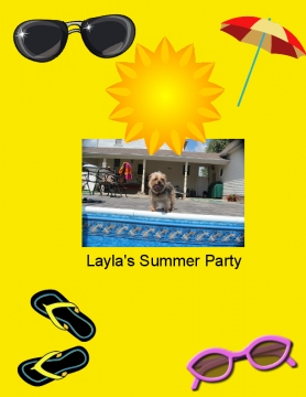 Layla's Summer Party