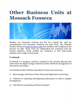 Other Business Units at Mossack Fonseca