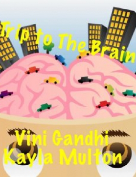 Trip to the Brain