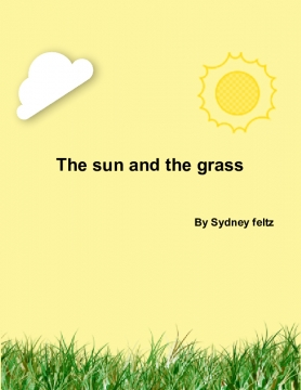 The sun and the grass