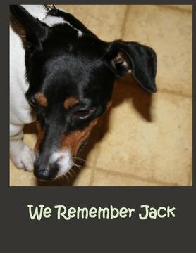 We Remember Jack