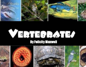 The book of vertebrates and animals