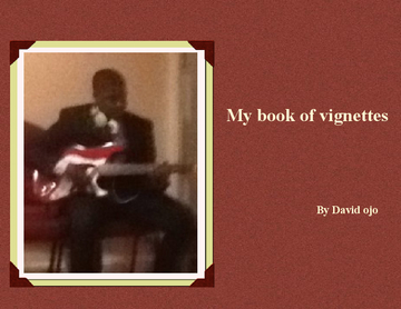 My book of vignettes