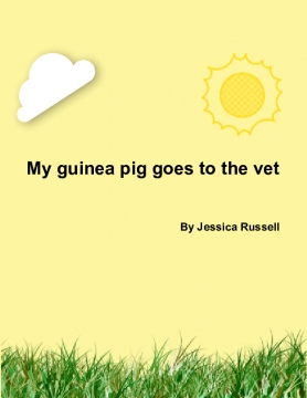 My guinea pig goes to the vet