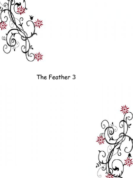 The Feather 3