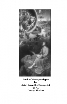 The Book of the Apocalypse Douay Rheims