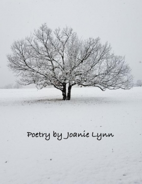 Poems & Photography