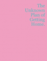 The Unknown Plan of Getting Home