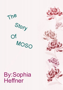 The Amazing Adventures of MOSO