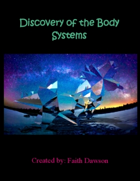 Discovery of the Body Systems