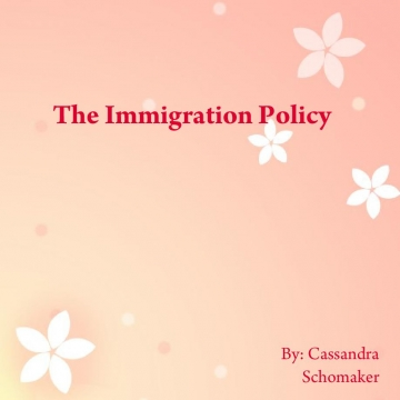 The Immigration Policy