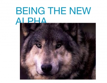 Being the new alpha