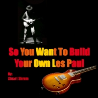 So You Want To Build Your Own Les Paul