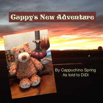 Cappy's New Adventure