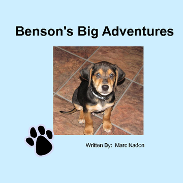 Benson's Big Adventure