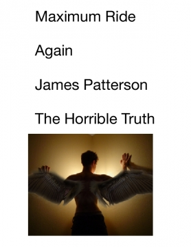 Maximum Ride, Again