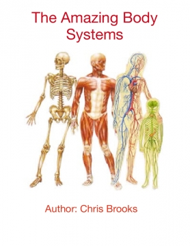 The Amazing Body Systems