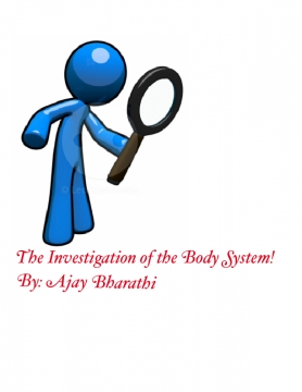 The investigation of the body system